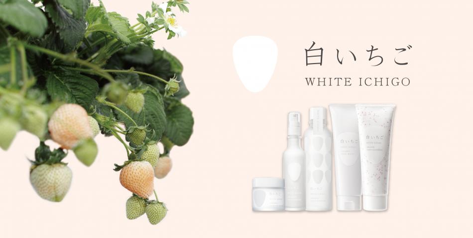 WHITE ICHIGO(ホワイトイチゴ)のファンサイト「日本発ハイテクオーガニックコスメ WHITE ICHIGO(ホワイトイチゴ)」