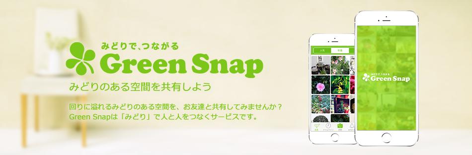 GreenSnapのファンサイト「みどりで、つながるGreenSnapのブロガー向けファンサイト」