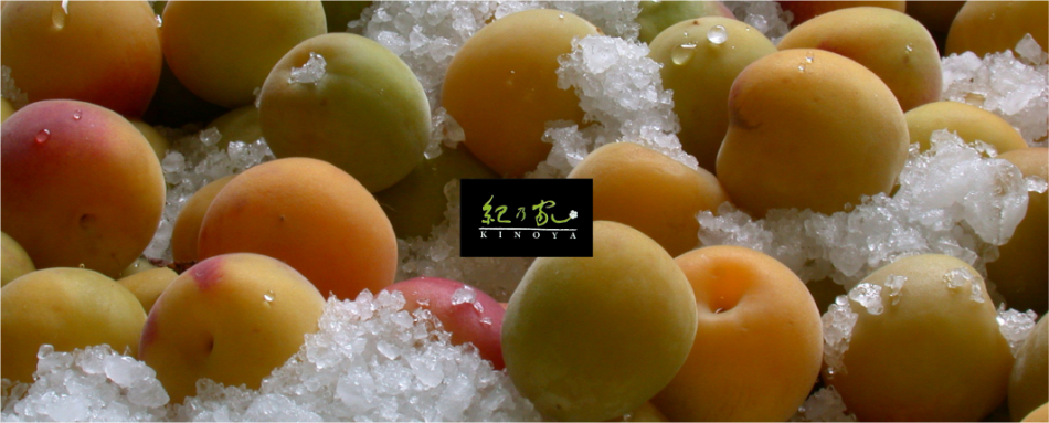川辺食品株式会社のファンサイト「紀乃家(川辺食品株式会社)」