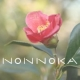nonnoka (株式会社のんのか)