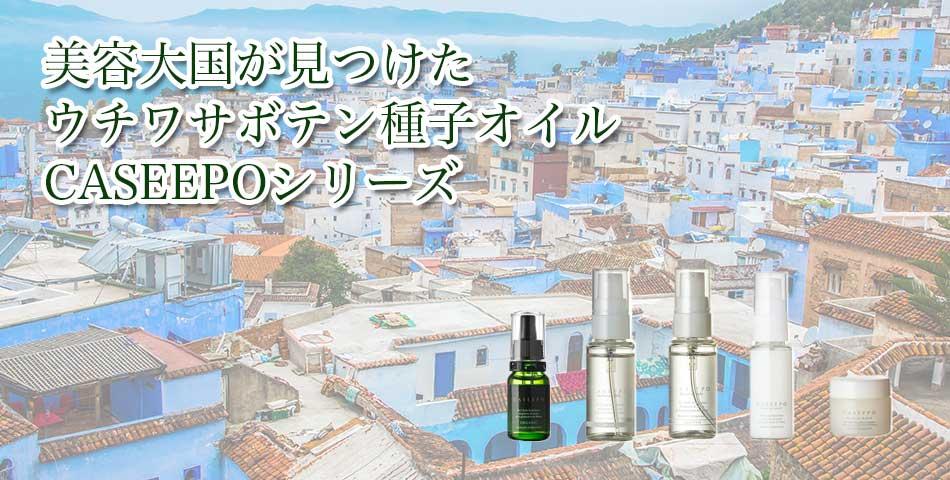 株式会社JE JAPANのファンサイト「CASEEPOファンサイト」