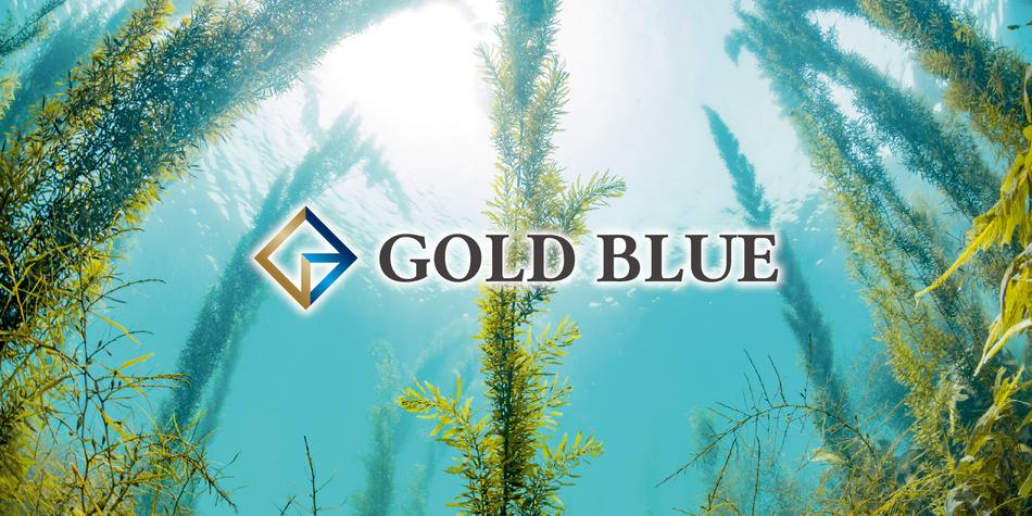 株式会社GOLD BLUEのヘッダー画像