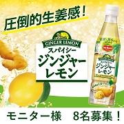 【発売前新商品】圧倒的生姜感!スパイシージンジャーレモンのモニター様8名募集!