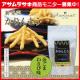 岡山県産の国産小麦を使用!保存料 ・着色料不使用の「かりんとう 金ごまわさび味」 10名様モニター募集/モニター・サンプル企画