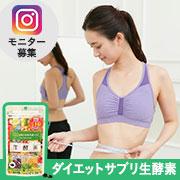 「楽天1位ダイエットサプリ生酵素モニター【50名様募集】Instagram必須」の画像、ジプソフィラのモニター・サンプル企画