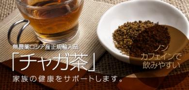 チャガ茶 カバノアナタケ茶 白樺 ノンカフェイン 無農薬