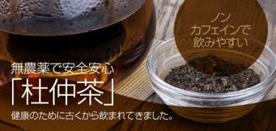杜仲茶 とちゅう茶 ノンカフェイン 無農薬