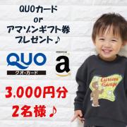 【3000円分のQUOカード or アマゾンギフト券プレゼント!!合計2名様】2歳~12歳のお子様についてのアンケート♪