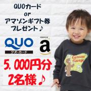【5000円分のQUOカード or アマゾンギフト券プレゼント!!合計2名様】0歳~6歳のお子様についてのアンケート♪