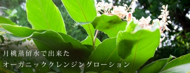 satamisaki organics/佐多岬石けん株式会社