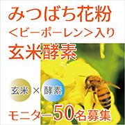 話題のスーパーフード「みつばち花粉(ビーポーレン)」入り玄米酵素モニター募集
