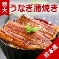 【熊本産うなぎ蒲焼】 5名様モニター募集/モニター・サンプル企画