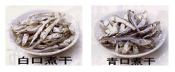 白い煮干と青い煮干の味は違います