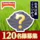 イベント「魚沼の地で、魚沼のお米で、魚沼のお水で!こだわりのパックごはんモニター募集!!」の画像