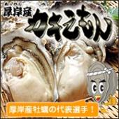厚岸漁協直送 特選 カキえもん(生食用殻付牡蠣)