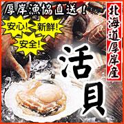 厚岸漁協直送!殻付活貝セット(ホタテ・ほっき・つぶ )
