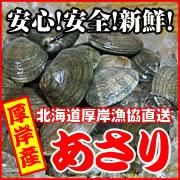 厚岸漁協直送!北海道厚岸産あさり