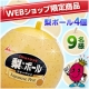 イベント「【井村屋】ウェブショップ限定商品★「梨ボール」を9名様にモニタープレゼント♪」の画像