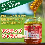【イワタニ アイコレクト】アクティブジャラハニー