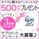 【クオカード500円】サプリメントのアンケート3名様♪ 20