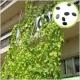 イベント「ヘチマ倶楽部会員募集!壁面緑化の輪を広げよう 300名様に種無料プレゼント♪」の画像