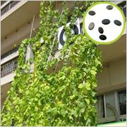 「ヘチマ倶楽部会員募集!壁面緑化の輪を広げよう 300名様に種無料プレゼント♪」の画像、株式会社ネオナチュラルのモニター・サンプル企画