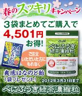春のスッキリキャンペーン☆べにふうき緑茶濃縮粒3袋セット