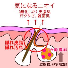 ノンシャンプー ノンシリコン ヘアケア ★ノンプー2ステップ★