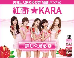 紅酢(ホンチョ)★KARA紹介ページ