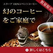 【ギフトに最適】エクーア シベットコーヒー(コピルアク)をホットで【10名様】