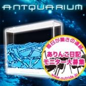 NASA開発アリのインテリア【アントクアリウム】