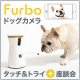 【謝礼あり】 Furbo ドッグカメラ タッチ&トライ+座談会 5名様募集