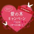 メリー愛の木キャンペーン 2020♪/モニター・サンプル企画