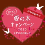 メリー愛の木キャンペーン 2020♪