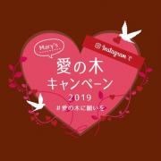 「メリー愛の木キャンペーン 2019♪」の画像、株式会社メリーチョコレートカムパニーのモニター・サンプル企画