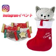 「猫好き大募集!メリーチョコレートクリスマス新商品モニター様募集!!」の画像、株式会社メリーチョコレートカムパニーのモニター・サンプル企画