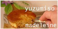 柚子味噌まどれいぬ