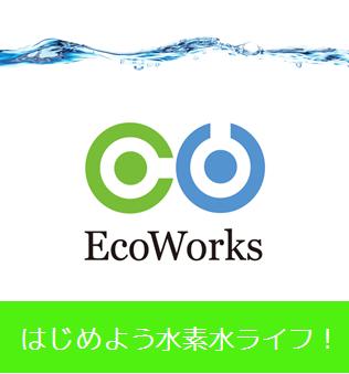 株式会社エコ・ワークス
