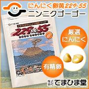 【てまひま堂】にんにく卵黄229-55(ニンニクゴーゴー)