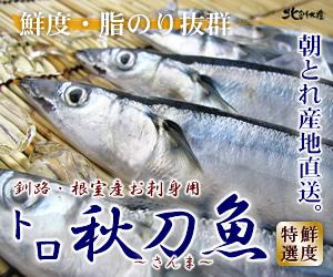 トロ秋刀魚(さんま) 朝とれお刺身用 かにと言えば北釧水産