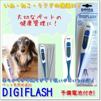 動物用体温計デジフラッシュ(BestAid Yahoo!店)