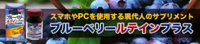 PC・スマホを使用する現代人に【ブルーベリールテインプラス】