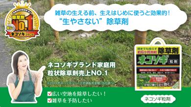 レインボー薬品株式会社 『ネコソギ』 シリーズ