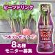 \奇跡の野菜/ビーツドリンクのアレンジレシピモニター募集!!/モニター・サンプル企画