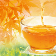 「【 ホッと一息♪ 】純国産プーアール茶! 画像投稿モニター募集♪」の画像、株式会社荒畑園のモニター・サンプル企画