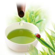株式会社荒畑園の取り扱い商品「荒畑園の自慢の上級深むし茶3煎」の画像