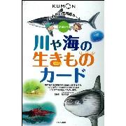 くもんのオリジナル教具『自然図鑑 川や海の生きものカード』