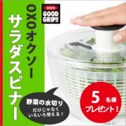 「OXO(オクソー)サラダスピナー(野菜水切り器)使い方アイデア募集モニタ5名様募集!」の画像、株式会社ワイ・ヨットのモニター・サンプル企画