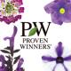 イベント「PWの花を育てる!『ブルーサマー系5品種セット』 ガーデニングモニター!」の画像