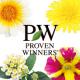 イベント「PWの花を育てる!『かわいいビタミンカラー系5品種セット』 ガーデニングモニター」の画像
